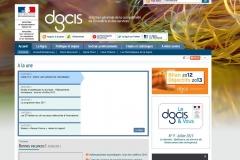 Le site dgcis.gouv.fr en août 2013